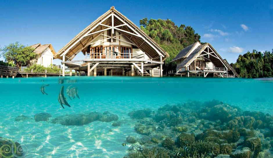 resort raja ampat tren travel